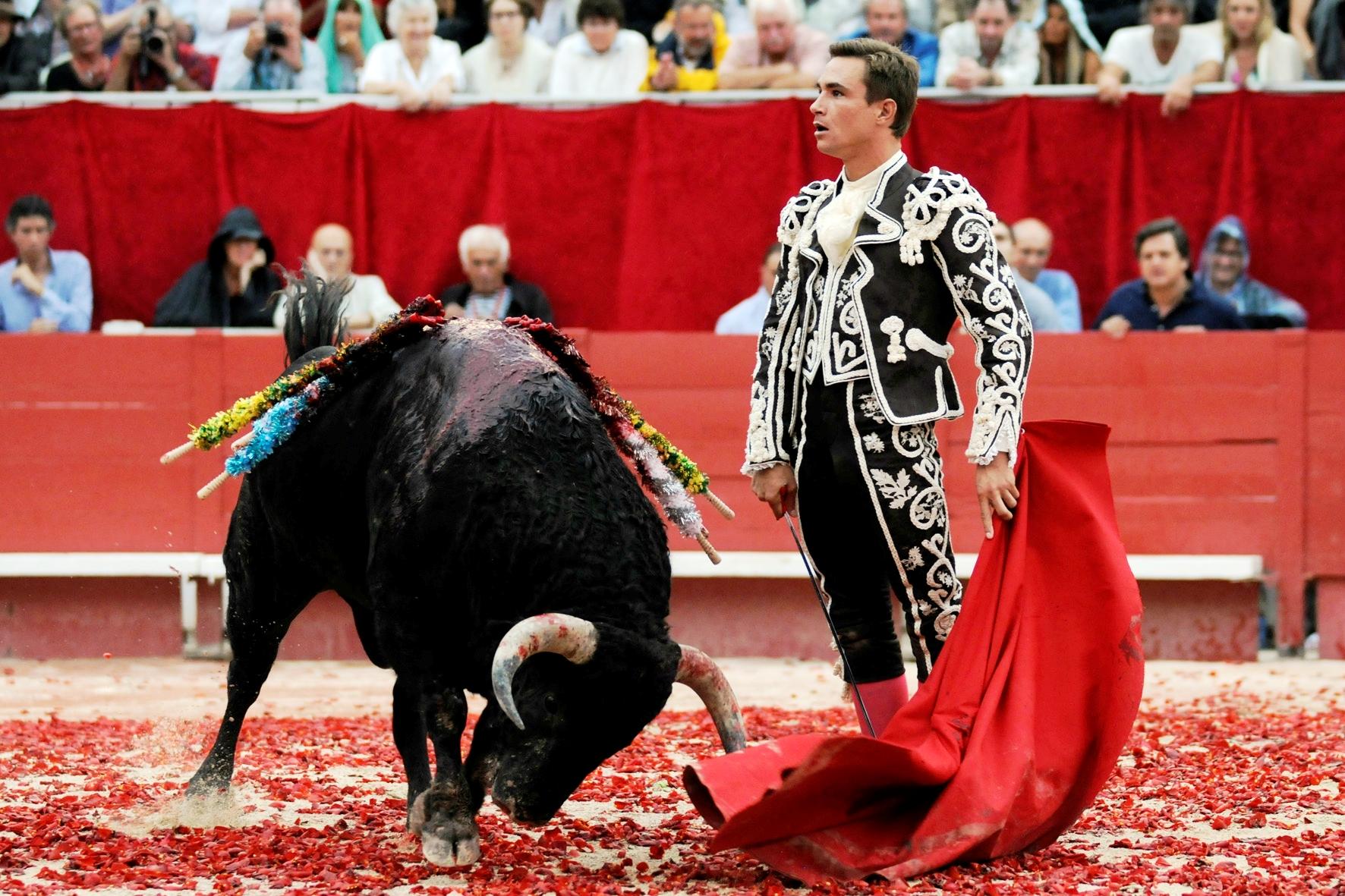 Бой быков в Севильи