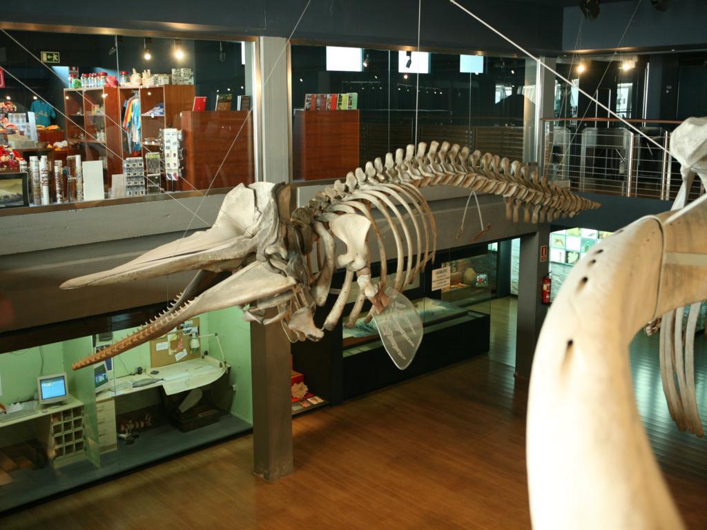Морской музей в Сантандере
