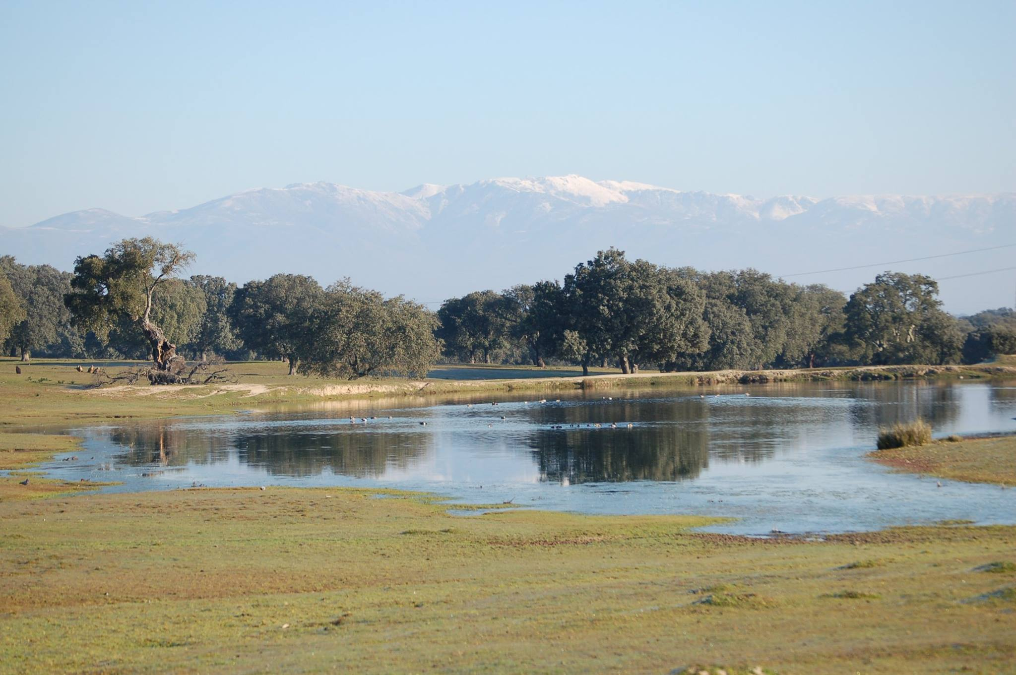 Природный парк Монфрагуэ