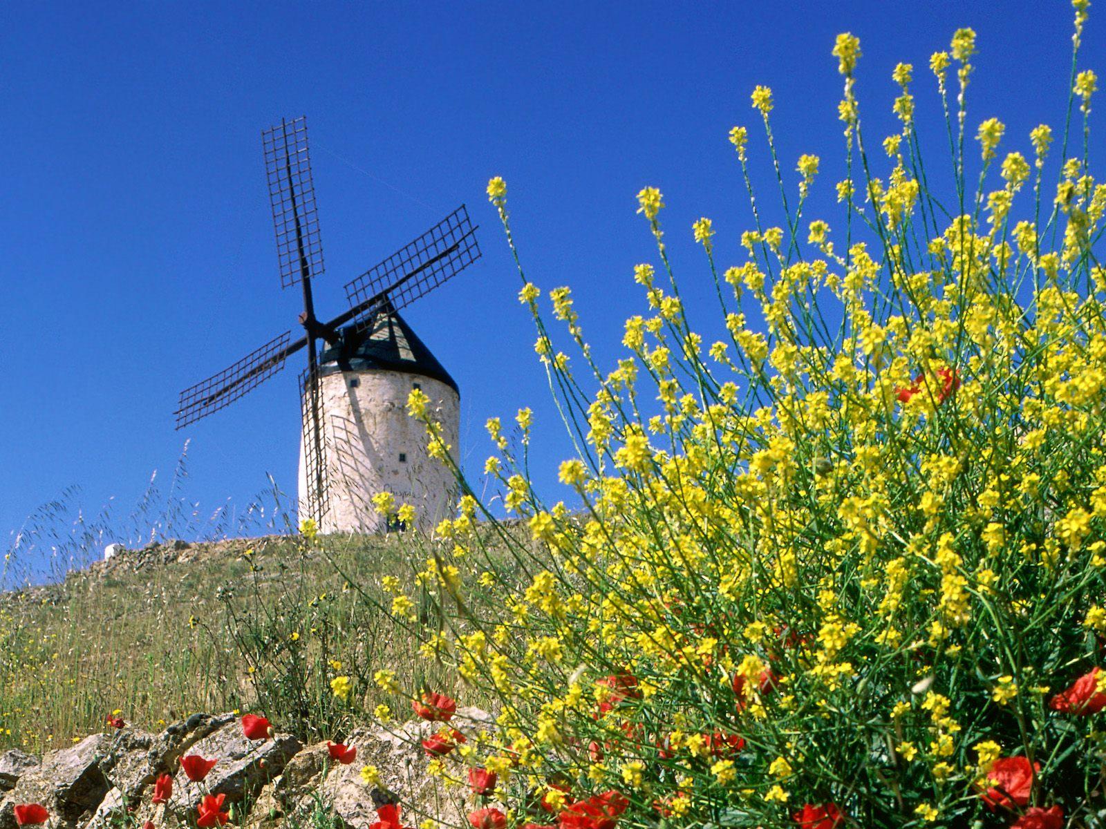 Ветряная мельница в Консуэгре