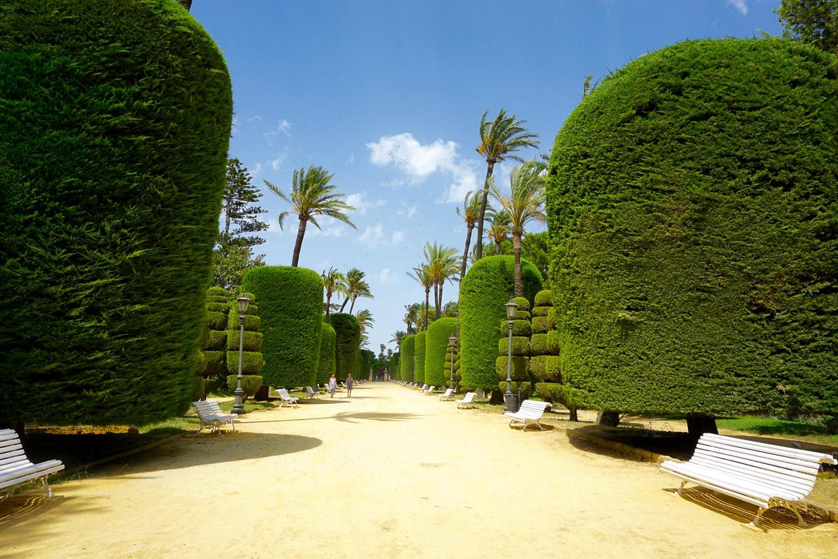 Генуэзский парк