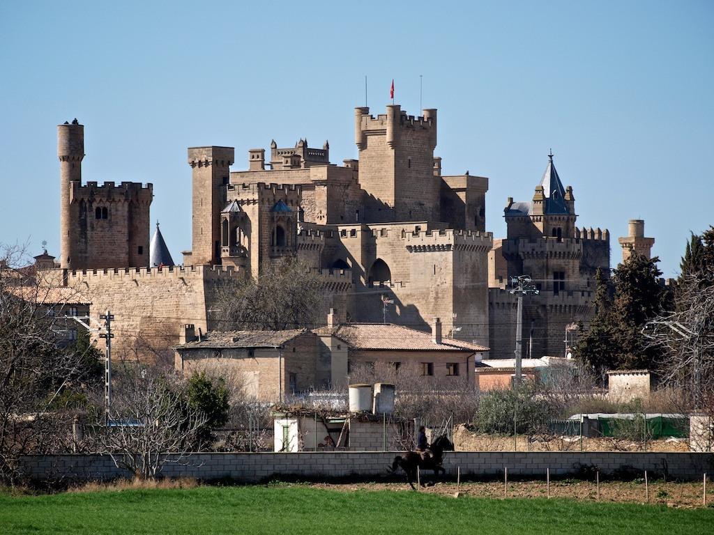 Королевский замок Олите